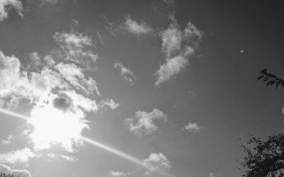 Schwarz-Weiß – Gedicht