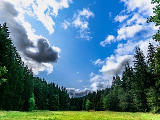 Die kleine Wolke